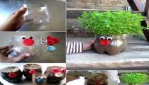 استخدام الزجاجات البلاستك الفديمه للزراعة النباتات في البيت