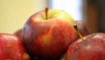 فوائد عصير التفاح ١٠ أسباب تجعلك تحب تناول عصير التفاح