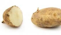 تعرف على اضرار براعم البطاطا وكيفية تجنب تسمم البطاطا