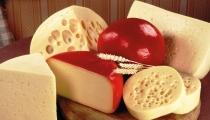 أشهرأنواع الجبن في العالم وفوائدها