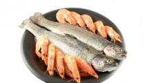سمك بحشو الكالماري والقريديس